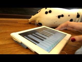Великая пианистка=D
